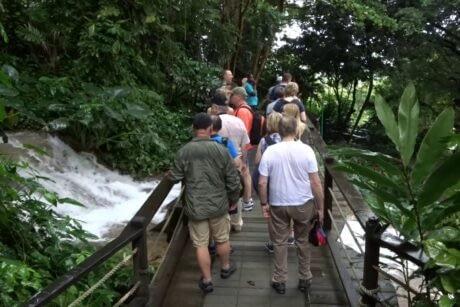 Konoko Falls Botanical Gardens